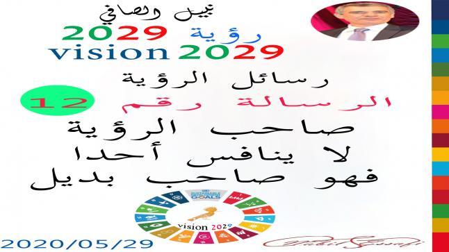 رؤية 2029 من أجل قيادة المجتمع نبيل الصافي رؤية 12