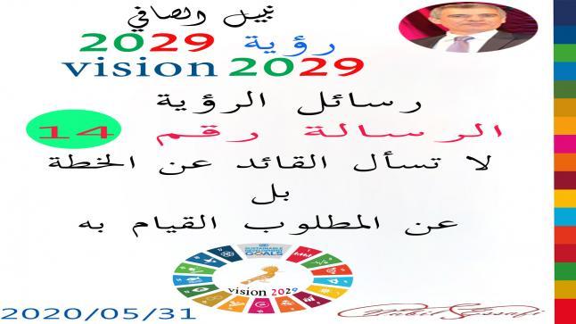 رؤية 2029 من أجل قيادة المجتمع نبيل الصافي رؤية 14