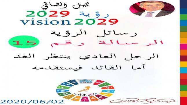 رؤية 2029 من أجل قيادة المجتمع نبيل الصافي رؤية 15