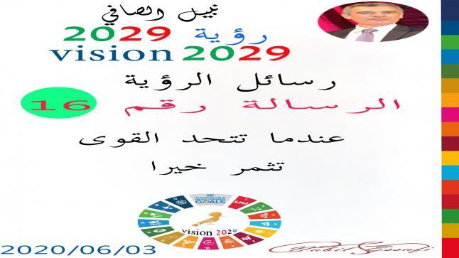 رؤية 2029 من أجل قيادة المجتمع نبيل الصافي رؤية 16