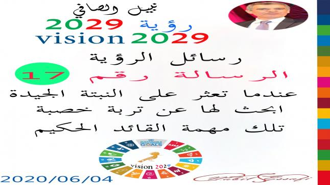 رؤية 2029 من أجل قيادة المجتمع نبيل الصافي رؤية 17