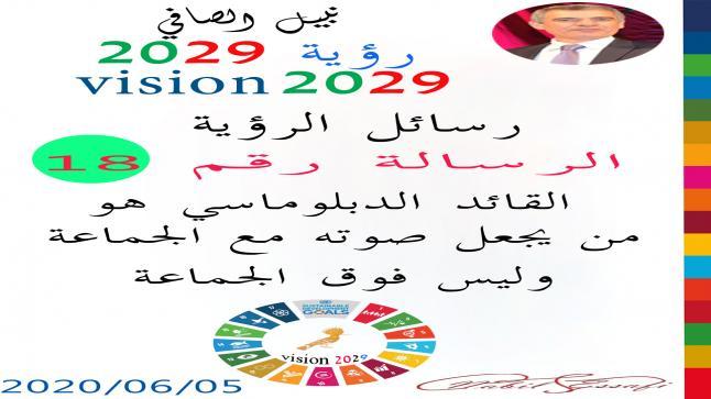 رؤية 2029 من أجل قيادة المجتمع نبيل الصافي رؤية 18