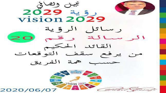 رؤية 2029 من أجل قيادة المجتمع نبيل الصافي رؤية 20